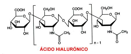 acido hialuronico molecula