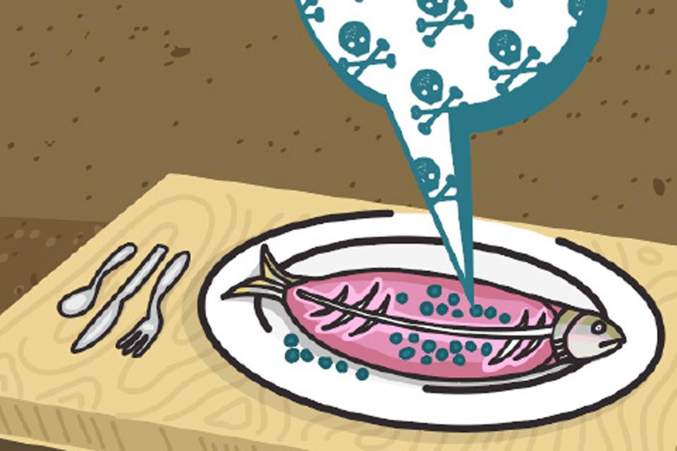 microplasticos en comida