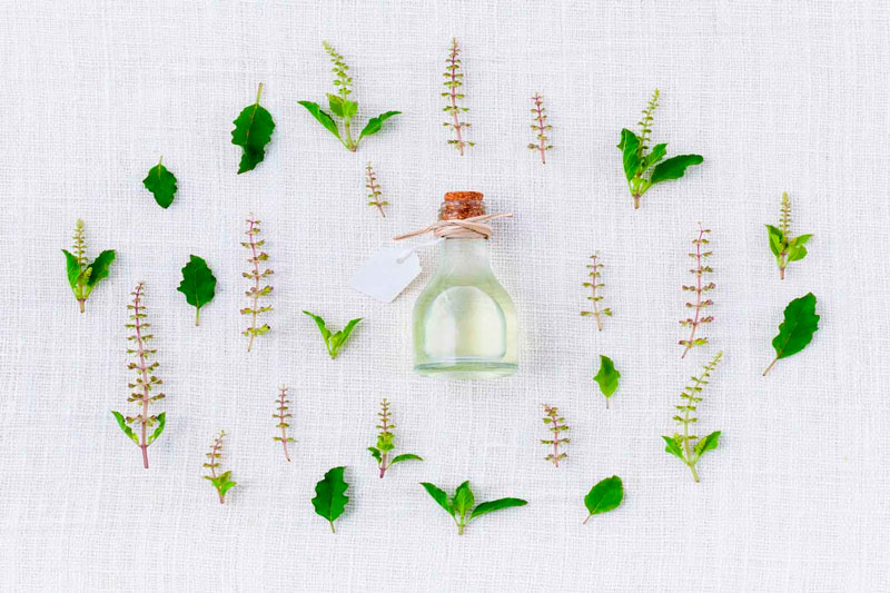 pasate a los perfumes ecologicos